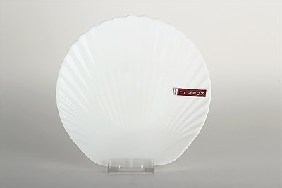 Тарелка плоская 20см Ракушка LBKP80/6 Дары моря - фото 38099