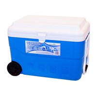 Термобокс 60 л С22600 голубой